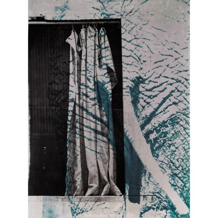 Robert Rauschenberg-Robert Rauschenberg - Erosive Hide-1989