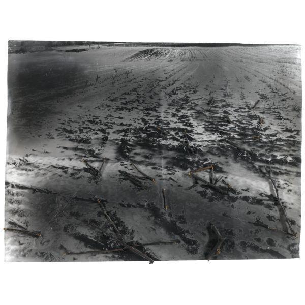 Anselm Kiefer-Fur Paul Celan, Rutenganger-2005