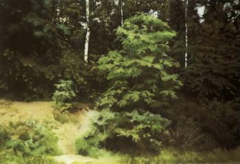 Gerhard Richter-Waldstuck (Woodland)-1987