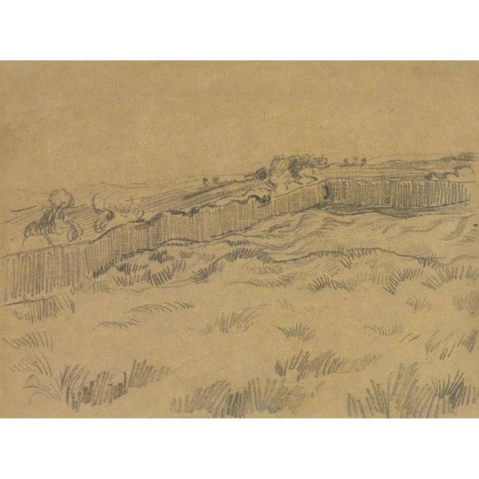 Vincent van Gogh-The Walled Wheatfield (1890)-1890