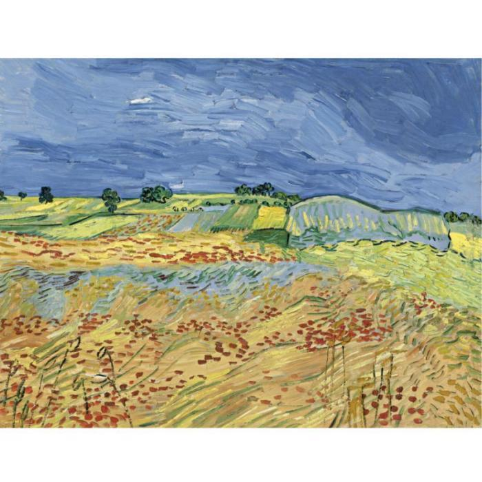 Vincent van Gogh-The Fields-1890
