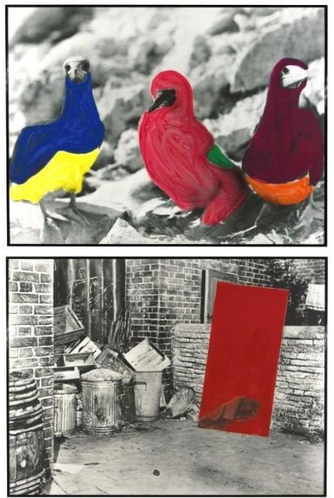 John Baldessari-Red Blockage Color Coded Birds-