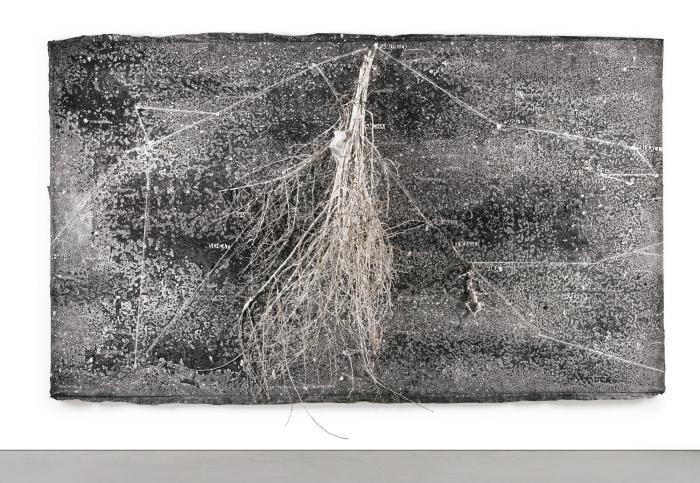 Anselm Kiefer-Wassermann (Aquarius, The Constellation)-2001