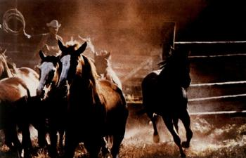 Richard Prince-Cowboys-1984