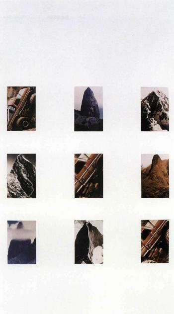Richard Prince-Creative Evolution # 3 - King Kong-1987