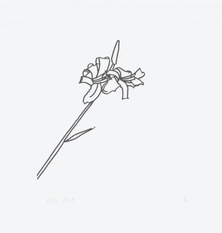 Alex Katz-From Edges / Ohne Titel / Untitled (Schroder 312, 318-320)-1997