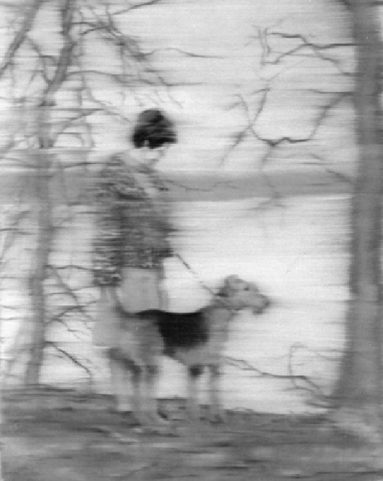 Gerhard Richter-Frau mit Hund am See (Woman With her Dog by the Lakeside)-1967