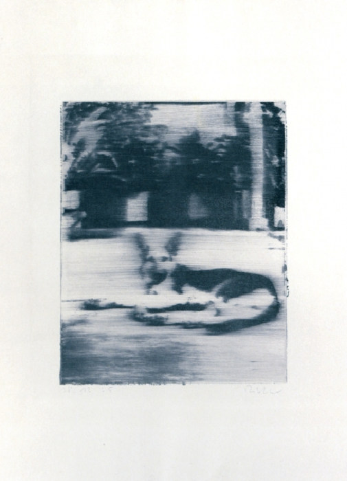 Gerhard Richter-Hund (Dog)-1965