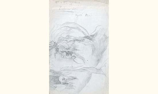 Leonora Carrington-Sans titre-1940