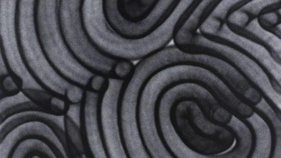 APEXER - Finger Print 1, 2019 (detail)
