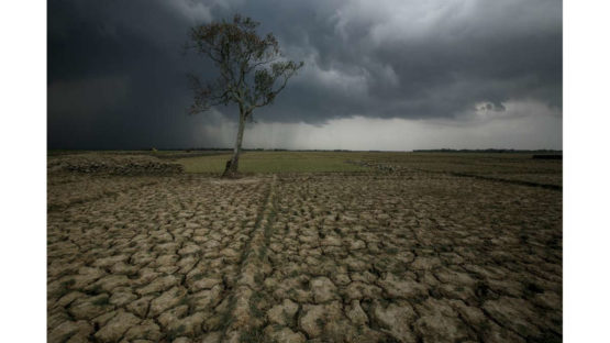 Abir Abdullah - Climate Change