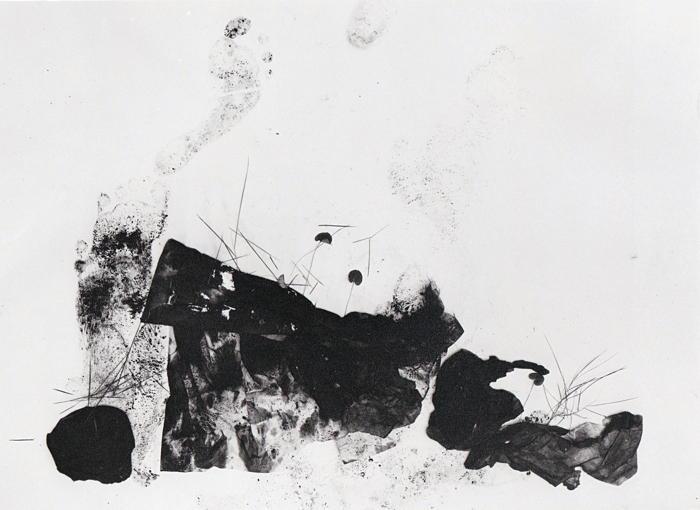 Adou-Leaves of Grass No. 151-2014