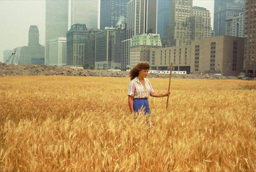 Agnes Denes Wheatfield A Confrontation 1982
