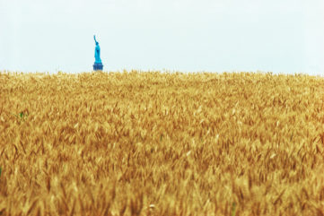 Could Agnes Denes' Wheatfield Be Even More Relevant Today?