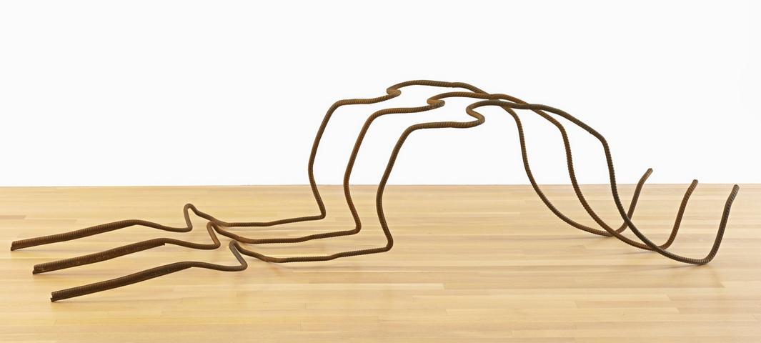 Ai Weiwei-Rebar 38-2010