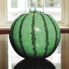 Ai Weiwei-Watermelon-2006