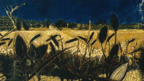 Alan Reynolds - Summer - Young September s Cornfield (detail) - 1954