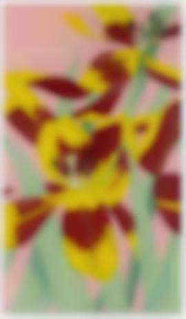 Alex Katz-Open Tulips-1970
