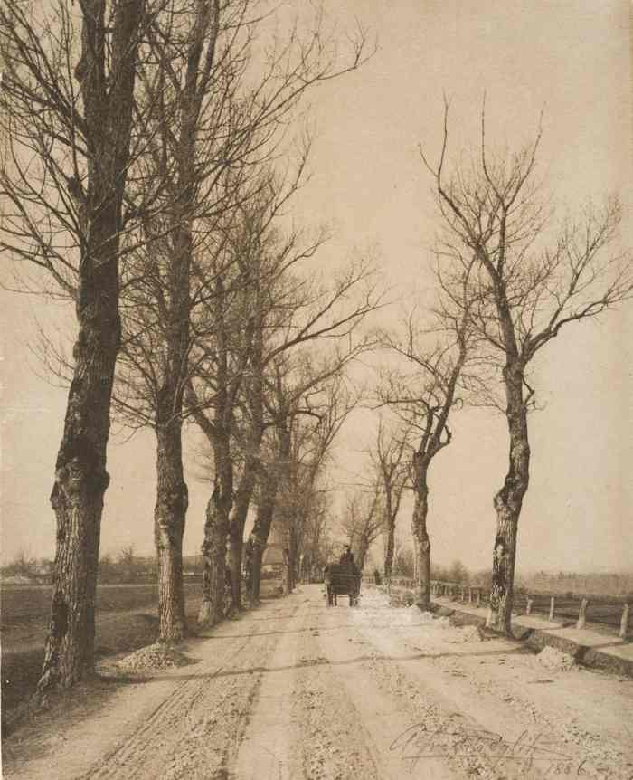 Alfred Stieglitz-November Days-1887