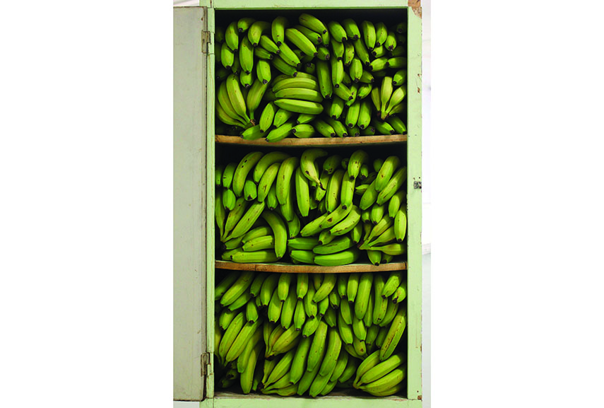 Alina Chaiderov - Before 1989 We Kept The Bananas In The Closet, 2014. Found wardrobe, bananas.172x66x58 cm. Courtesy the artist and Galerie Antoine Levi, Paris