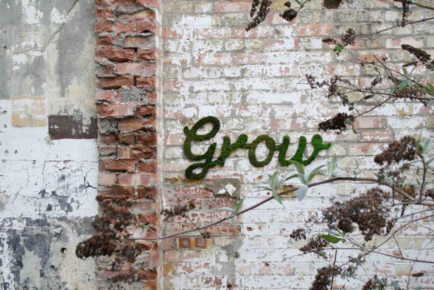 moss graffiti step by step tutorial