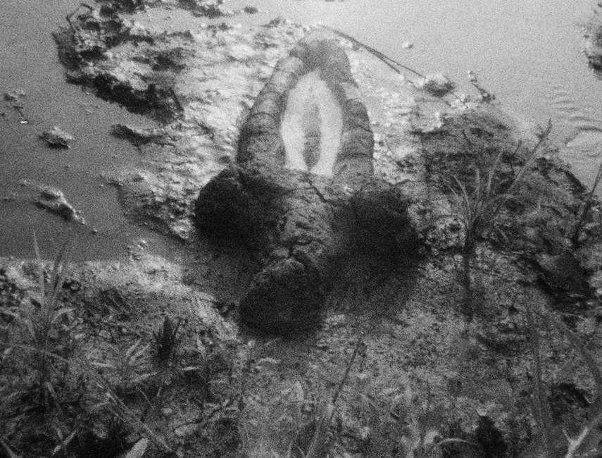 Ana Mendieta - Birth