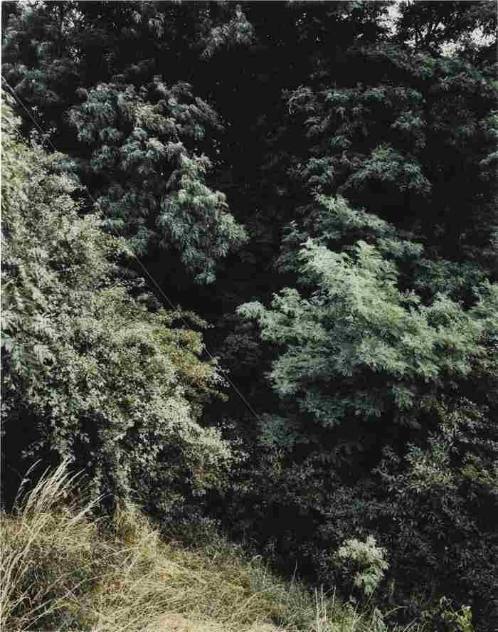 Andreas Gursky-Krefeld-1989