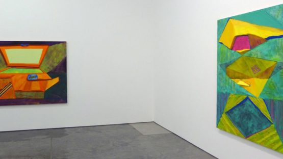 Andrzej Zielinski - solo show at Dolphin Gallery, Kansas CIty, 2012, installation view, photo credits - NY Post Modern