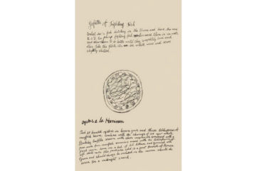 Wild Raspberries - When Andy Warhol Designed a Cookbook