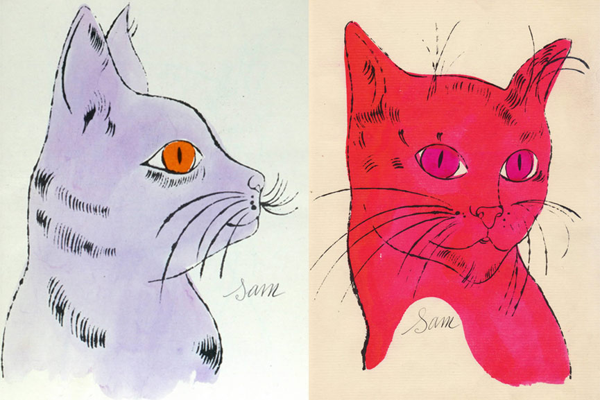 Line Drawing Cat Face : Cat drawing face abstract line on a white