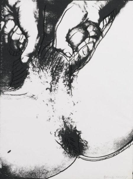 Andy Warhol-Sex Parts-1978