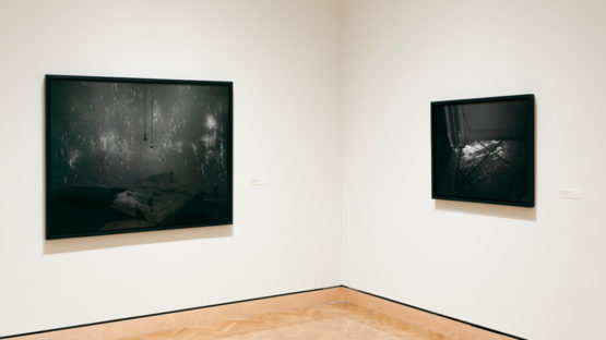 Angela Strassheim - Evidence, solo show at Perlman Gallery, 2011, installation view, photo credits - 2.Artsmia