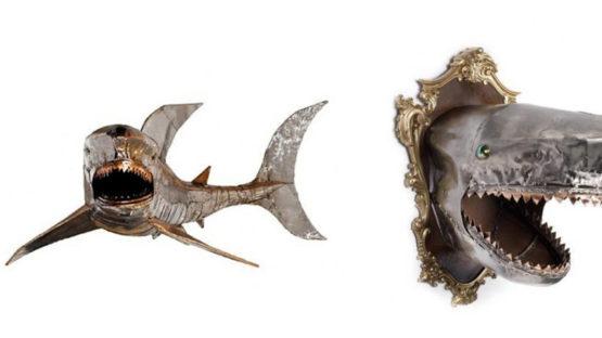 Anony D'Amico - Shark, 2009