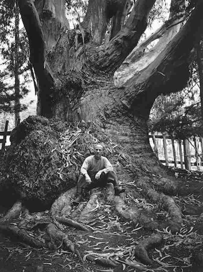 Ansel Adams-Edward Weston, Carmel Highlands-1945