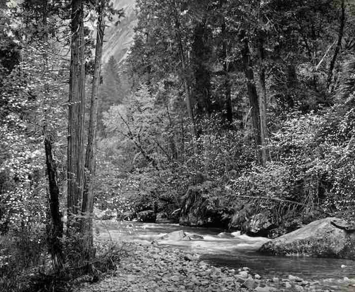 Ansel Adams-Tenaya Creek, Dogwood, Rain, Yosemite National Park-1948