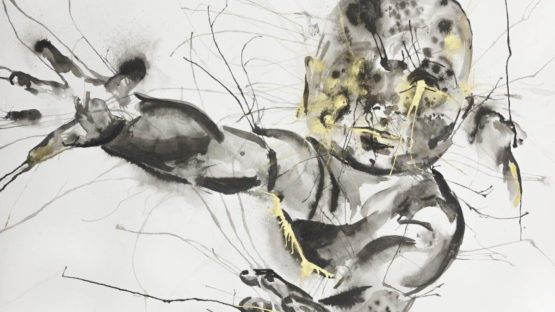 Ant Pearce - Sapiens 1 25-12-17 1, 2017 (detail)