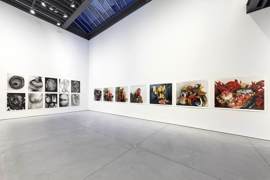 Nobuyoshi Araki, I , Photography, Installation View, 2018