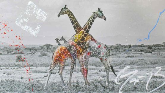 Arno Elias - Giraffe duet (detail), photo via galeries-bartoux.com