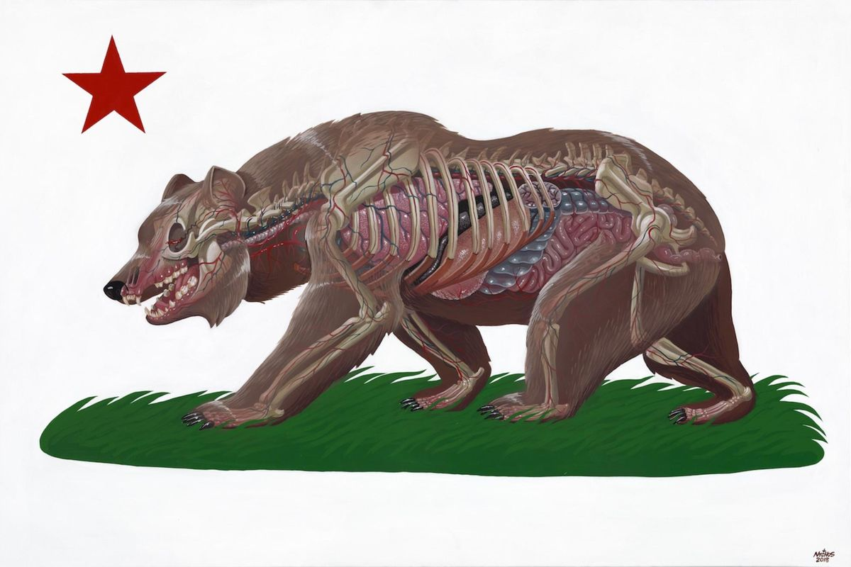 Bear Nychos - Translucent California, 2018