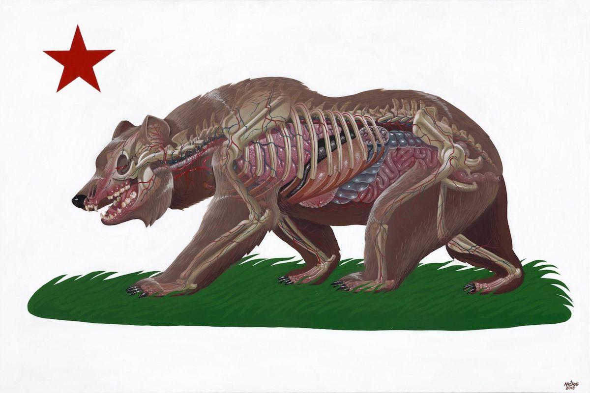 Bear Nychos - Translucent California, 2018