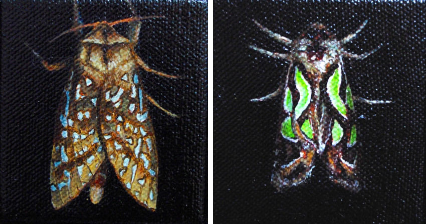 Ben Sheers - Moth No. 1, 2015 - Moth No. 3, 2015