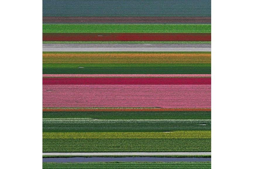 Bernhard Lang - Aerial Views, Tulip Fields 14, 2016