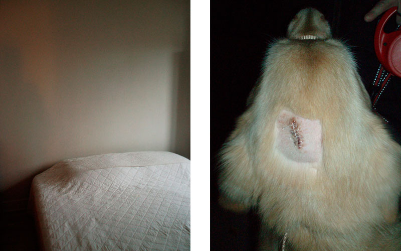 Bertrand Carriere - Chez Bruno and Maya, from the La Capteur 1, 2006