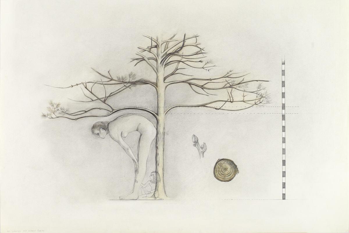 Birgit Jurgenssen - Growing with a tree