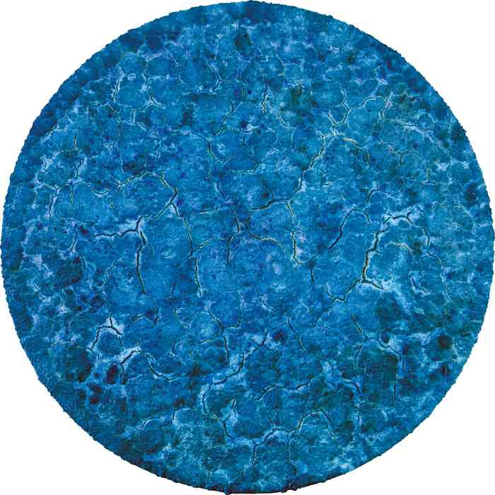 Bosco Sodi-Organic Blue-2010