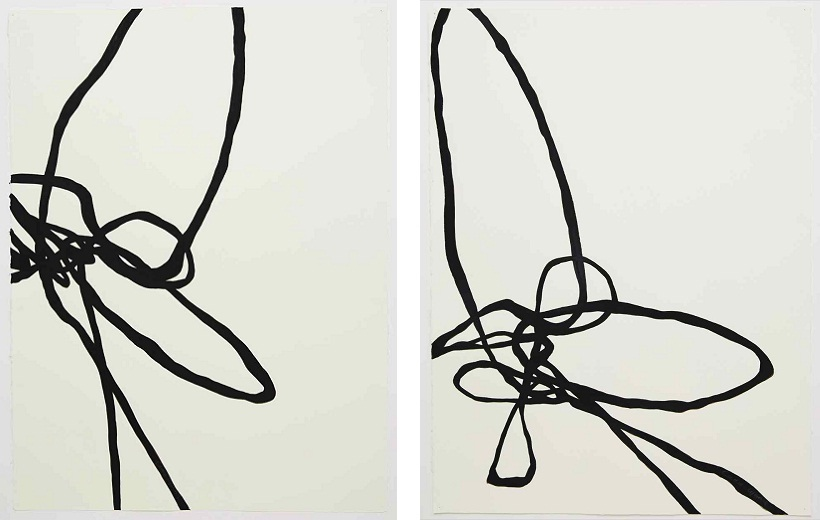 Camie Lyons - Bird Exits (left), Sinuous Drawing (right) 2014