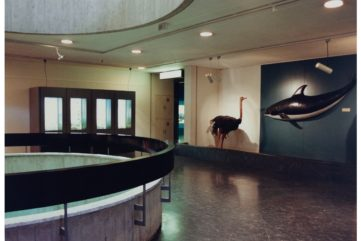 Kunsthaus Zürich Reviews Two Important Decades for Photography