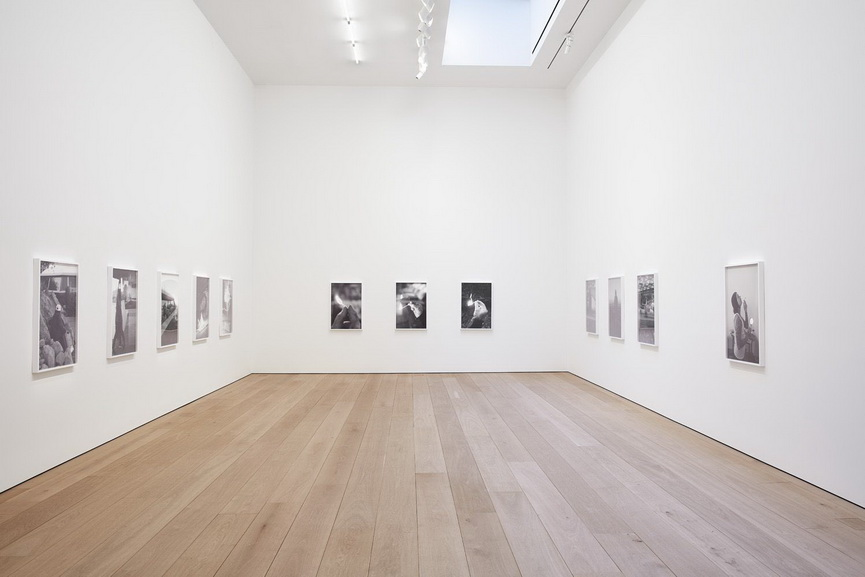 Catherine Opie - The Modernist, installation view