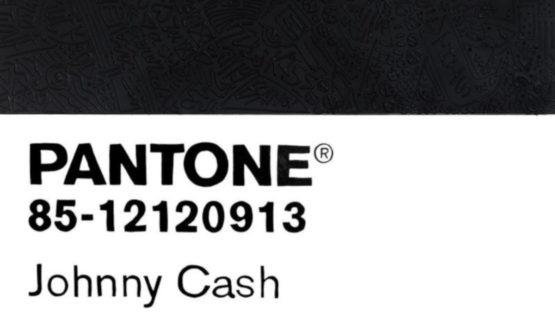 Cayla Birk - Birktone Series Johnny Cash (Pantone 85-12120913), 2018 (detail)