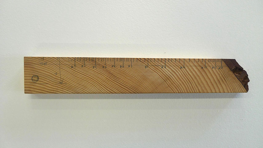 Ruler Documenta, 2012